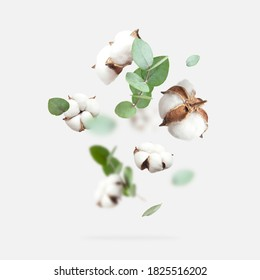Flying cotton flowers, green twigs of eucalyptus on light gray background. Creative Floral background with cotton, delicate flowers of fluffy cotton. Flat lay flowers composition, greeting card - Shutterstock ID 1825516202