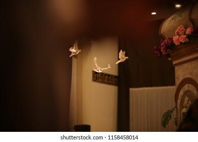 flying Dove indoor