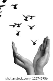 flying dove with open hand isolated on white freedom concept black and white background