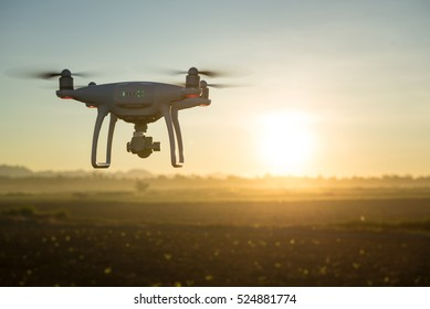 Flying drone above the wheat field