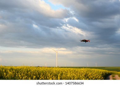 Flying drone on the yellow field of colza with windmills