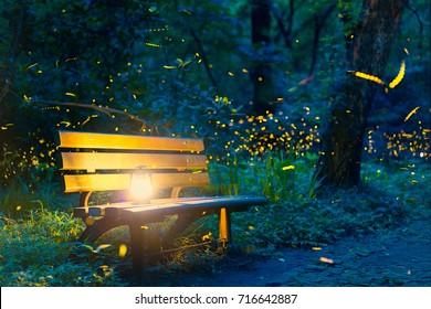 Flying fireflies