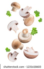 Flying mushrooms  isolated on white background with clipping path