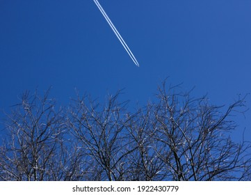 Flying plane, leaves a white trail on the blue sky and on the background of a tree