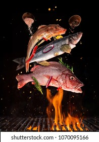 Flying raw whole fish from grill grid, isolated on black background. Concept of flying food, very high resolution image