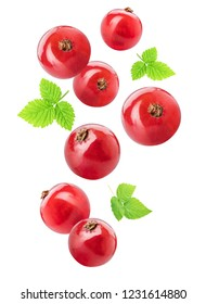 Flying red currants isolated on white background