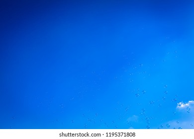 Lot of flying soap bubbles at blue sky background (copy space)