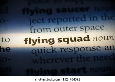 flying squad word in a dictionary. flying squad concept, definition.