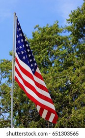 A Flying US Flag with a green tree and blue sky in the back ground.