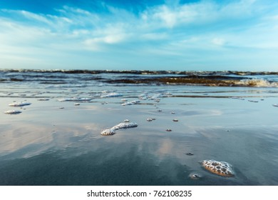 Foam on beach, Baltic sea , Latvia.