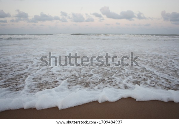 foam of the wave on the shore in Baia Formosa, city of the state of rio grande do norte, brazil