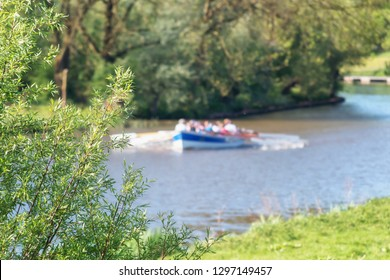 Focus on the bush in the foreground with a sloop in action on the river Linge in the Betuwe in the Netherlands