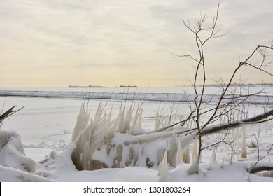 The focus on Ice covered tree limbs and grasses along the shore of Lake Michigan contrast with the background with huge icebergs in the distance showing the power of cold temperatures.