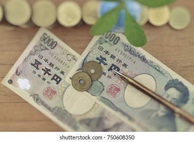 Focus on Japanese banknote and coin and gold pen with blur rolls ladder of money, green small tree plant on wood table