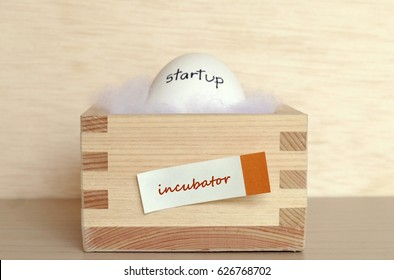 focus on the word on the box - Incubator - the concept of financing the startup company which represent by egg with the startup word on the shell