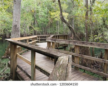 A Focus Stacked Image of a Portion of the Boardwalk at Manatee Springs, Florida