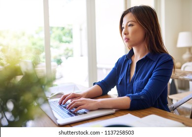 Focused Asian businesswoman sitting alone at table in her living room at home working online with a laptop and going over paperwork