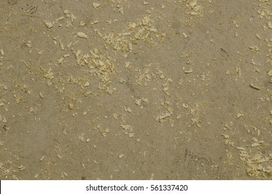 Focused texture of grey floor with wood shavings