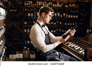Focused young male wine seller or cavist in white shirt with bowtie and apron looking at bottle, telling about the origin of this sort of wine, wine shelves on the background