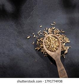 Foeniculum vulgare - Dry organic fennel seeds