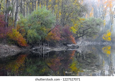 Fog Autumn riparian forests water reflection natur spirits gosts
