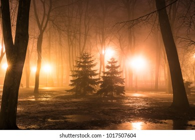 Fog in the city park at night by the light of street lamps during the thaw
