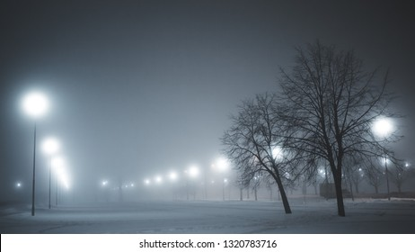 fog in a city park.   snow, winter weather. lanterns shine in the dark.