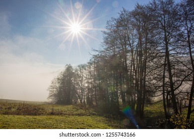 the fog clears over a road in the Black Forest and the sun shines on a blue sky