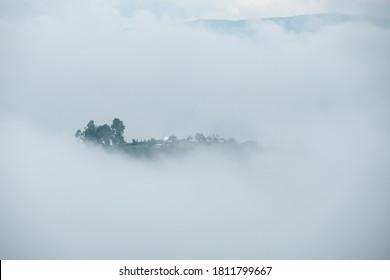 Nebel klettert vor dem Sonnenaufgang auf den Hügel.