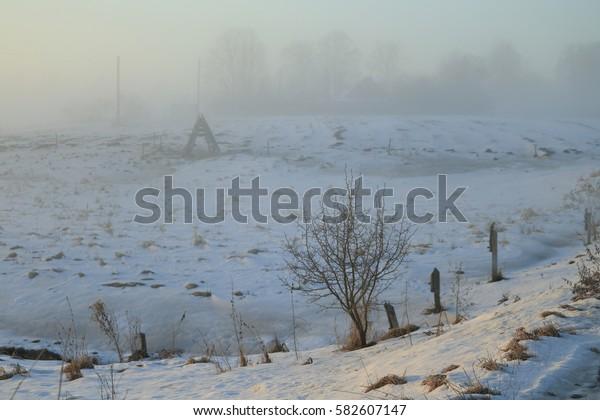 fog cloud in Frosty sunrise