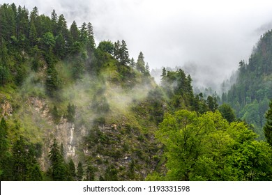 Fog and clouds among the forested mountains