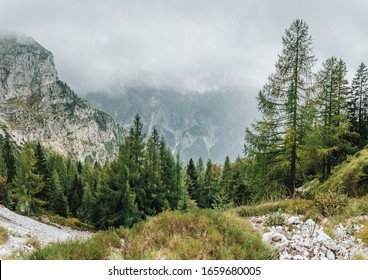 Fog or clouds over the mountains. Forest landscape with fir trees and stones. In summer or fall. Rocky terrain. View of mountains and trees along the way to Mangart Saddle, Slovenia, Europe.