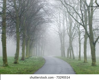 Fog covering a road in a park in England