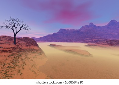 Fog in the desert, a rocky landscape,  3D rendering, beautiful canyon, a black tree on the rock and a sky with colored clouds.