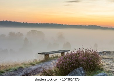 Fog in the early morning and first rays of sunshine in the nature park / nature reserve Lüneburg Heath, Germany
