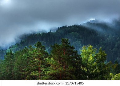 Fog formed on the mountain tops covered with dark coniferous taiga. Altai mountains, Katun river region, southern Siberia, Russia