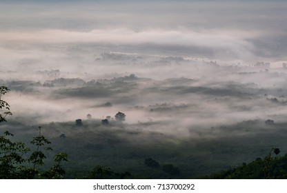 Fog in hills at the morning