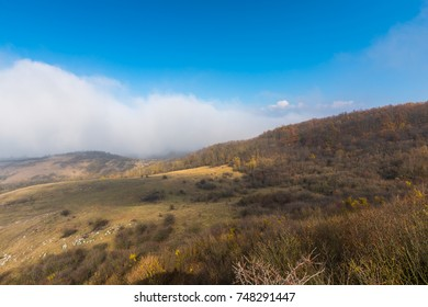 Fog landscape in the mountains