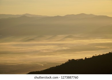 Fog mist on mountain in the morning.