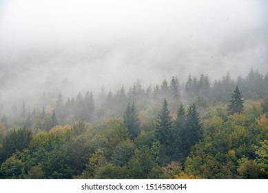 fog in the mountains in autumn.