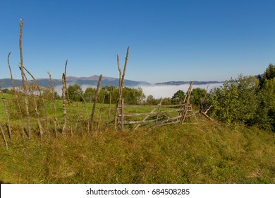 Fog in the mountains of the Carpathians