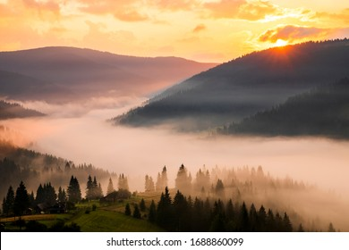 Fog in the mountains at dawn. Beautiful summer foggy landscape. Hiking in the mountains