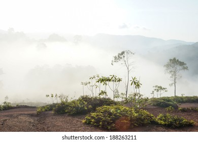 The fog mountains in summer, South of Thailand.