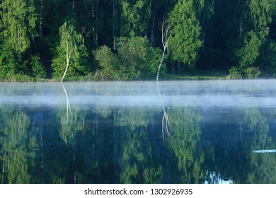Fog near the river and trees reflected in the water.