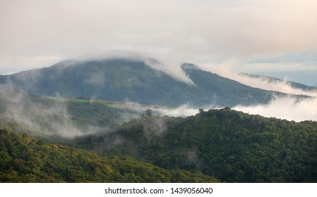 Fog on the forest and mountains