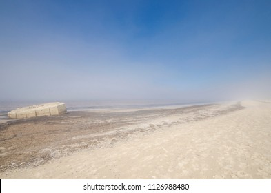 Fog on the sandy beach