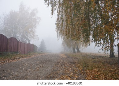 Fog on the street. Wet weather