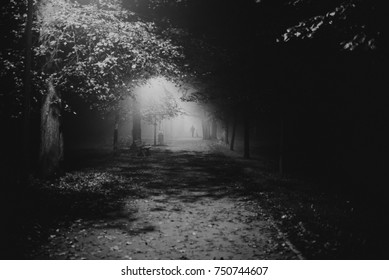 fog in the park, night, soft focus, high iso, black and white