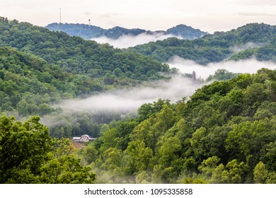 Fog rests in a valley in Appalachia.