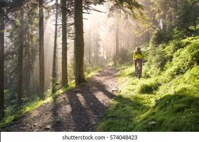 fog rider on a mountain bike overcome challenging tracks in the wild alpine forest at dawn on a background of the sun during the Ukrainian Carpathian marathon for off-road trails in the Carpathians